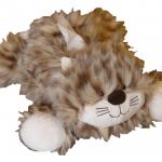 chat sauvage détouré